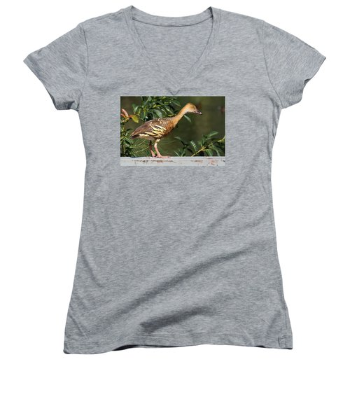 Young Duck Women's V-Neck T-Shirt