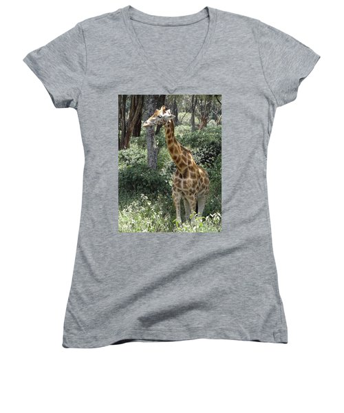 Young Giraffe Women's V-Neck T-Shirt