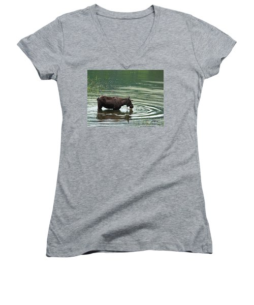 Young Moose In Pond Women's V-Neck T-Shirt