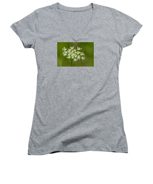 Women's V-Neck T-Shirt (Junior Cut) featuring the photograph Young Queen Anne's Lace  by Lyle Crump