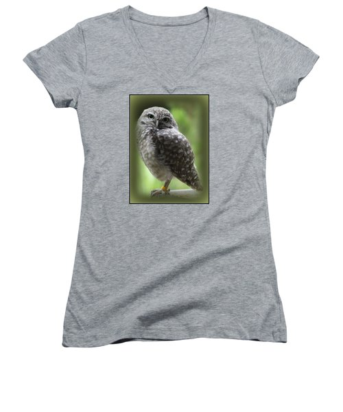 Young Snowy Owl Women's V-Neck (Athletic Fit)