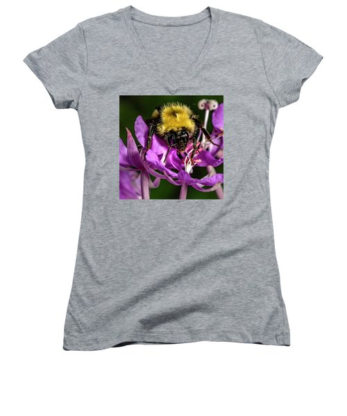 Women's V-Neck T-Shirt (Junior Cut) featuring the photograph Yummy Pollen by Darcy Michaelchuk