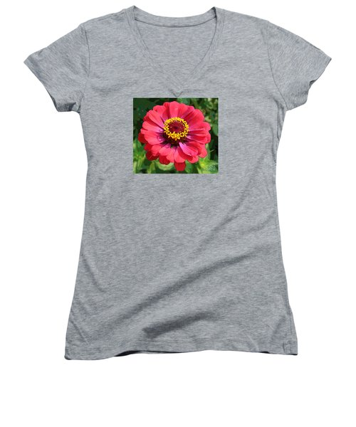 Women's V-Neck T-Shirt (Junior Cut) featuring the photograph Zinnia by Jeanette French