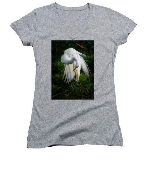 Breeding Plumage And Color Women's V-Neck