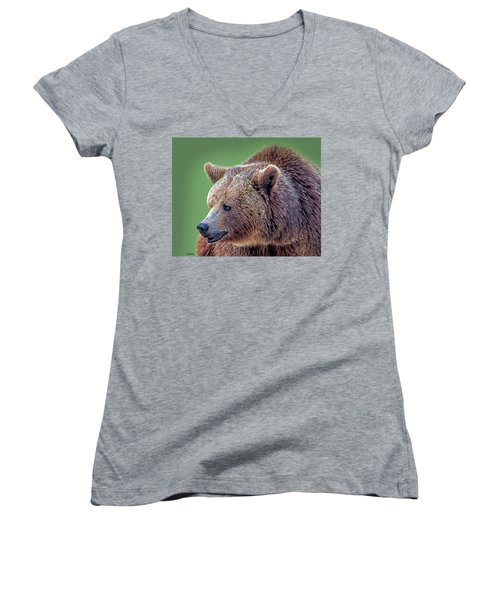 Brown Bear 5 Women's V-Neck