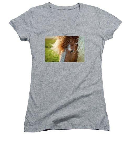 Icelandic Horse Women's V-Neck