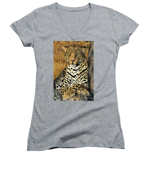 Women's V-Neck featuring the photograph African Leopard Portrait Wildlife Rescue by Dave Welling
