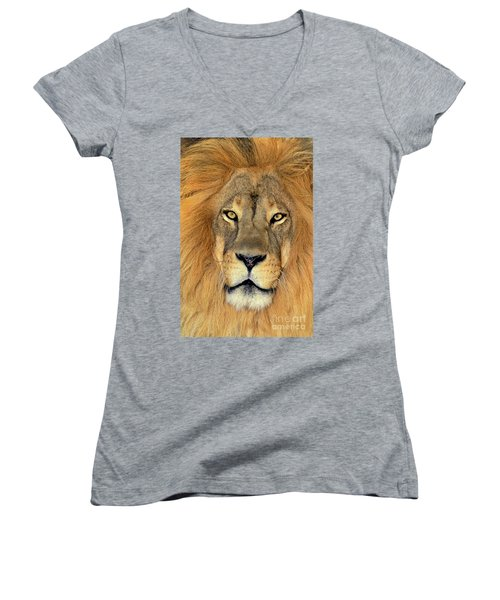 Women's V-Neck featuring the photograph African Lion Portrait Wildlife Rescue by Dave Welling