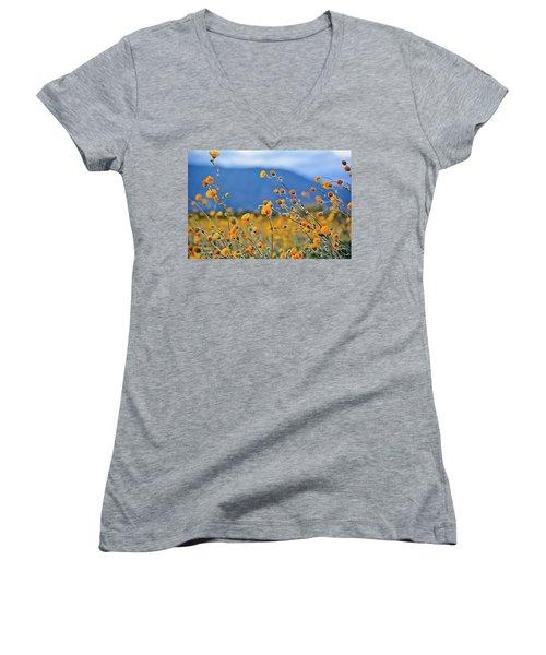 Anza Borrego Wild Desert Sunflowers Women's V-Neck