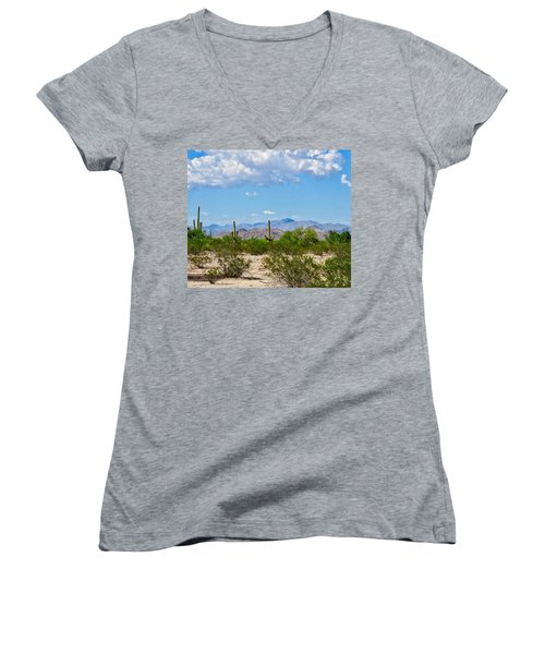 Arizona Desert Hidden Valley Women's V-Neck