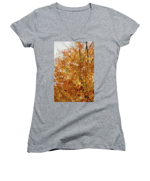 Autumn Explosion 1 Women's V-Neck