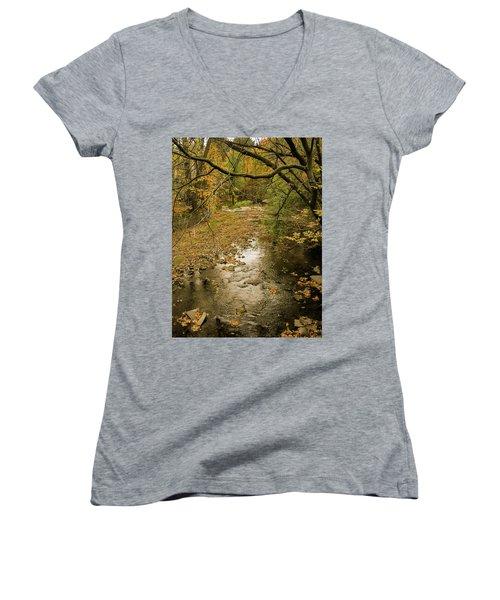 Autumn Forest Women's V-Neck