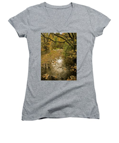 Autumn Forest Women's V-Neck