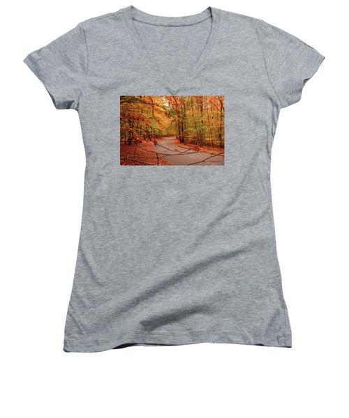 Autumn In Holmdel Park Women's V-Neck