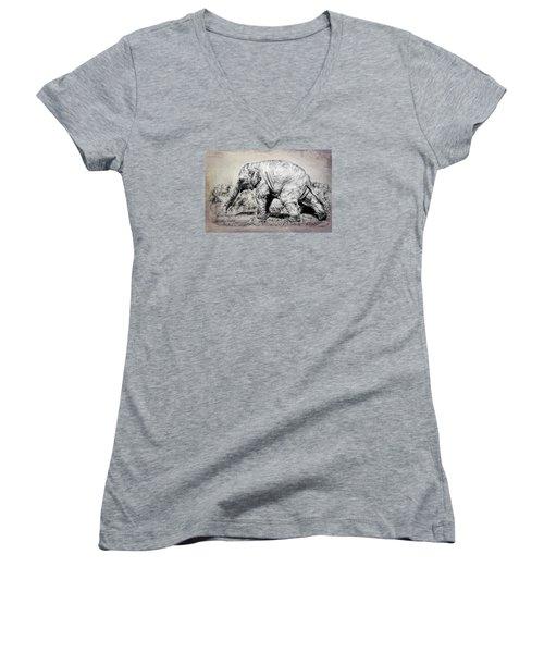 Baby Elephant Walk Women's V-Neck
