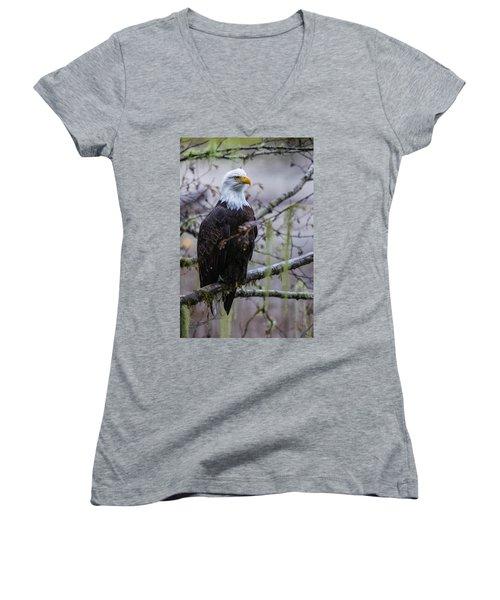 Bald Eagle In Rain Forest Women's V-Neck