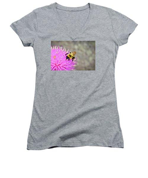 Bee On Pink Bull Thistle Women's V-Neck