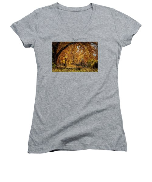 Bench With Autumn Leaves  Women's V-Neck