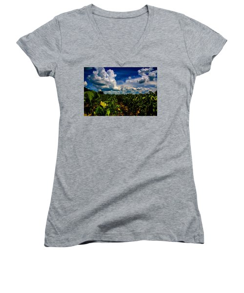 Blooming Cotton  Women's V-Neck