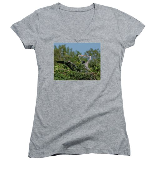 Breeding Herons Women's V-Neck
