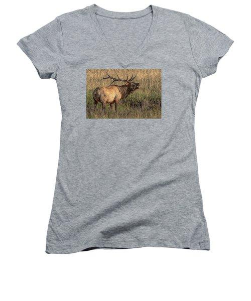 Bugling Bull Elk 7777 Women's V-Neck
