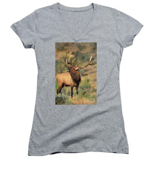 Bull Elk In Rut Bugling Yellowstone Wyoming Wildlife Women's V-Neck