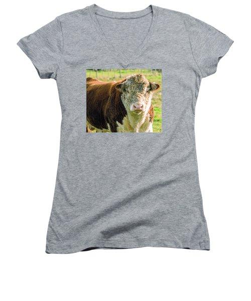 Bull In The Country Side Of Tasmania. Women's V-Neck