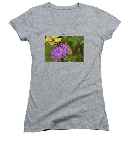 Butterfly On Bull Thistle Women's V-Neck