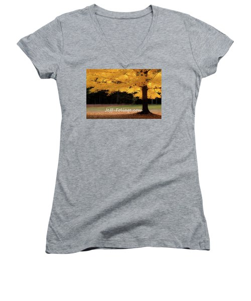 Canopy Of Gold Fall Colors Women's V-Neck