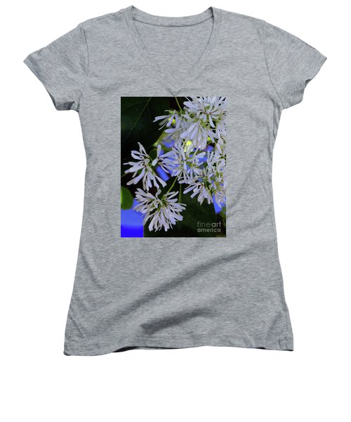 Carly's Tree - The Delicate Grow Strong Women's V-Neck