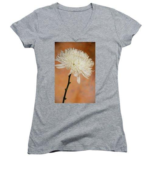 Chrysanthemum On Canvas Women's V-Neck