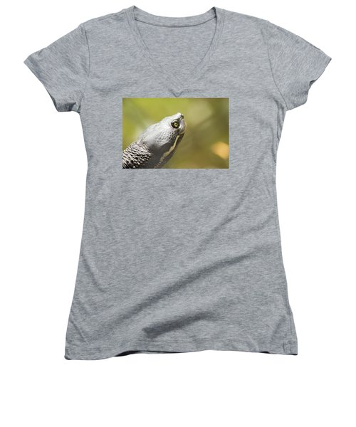 Close Up Of A Turtle. Women's V-Neck