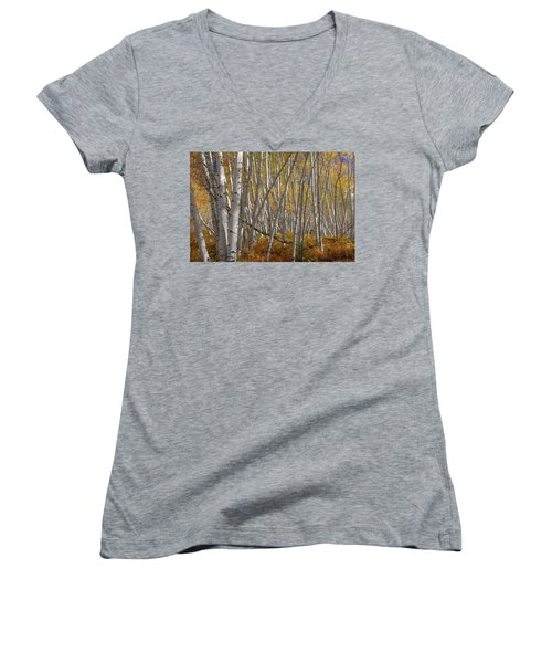 Women's V-Neck featuring the photograph Colorful Stick Forest by James BO Insogna