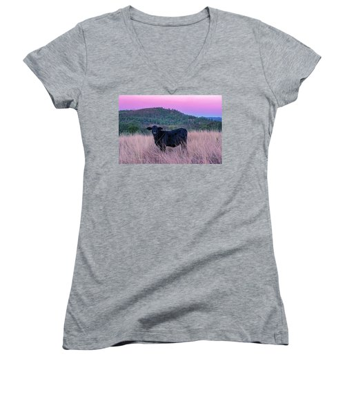 Cow Outside In The Paddock Women's V-Neck