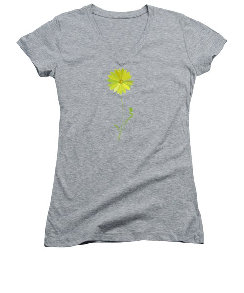 Daisy, Daisy Women's V-Neck