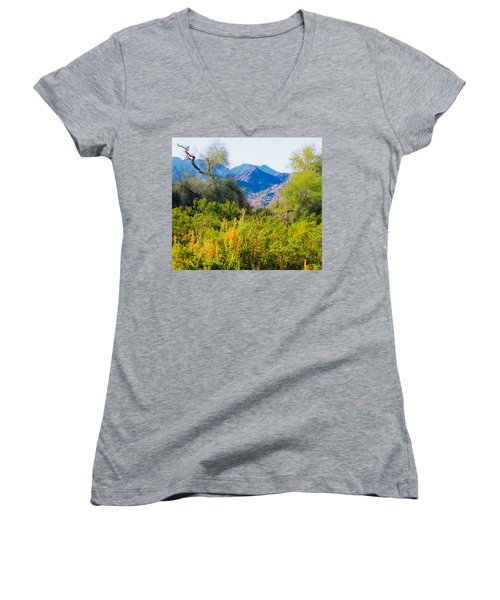 Deep Desert Valley In A Sonoran Desert Spring Women's V-Neck