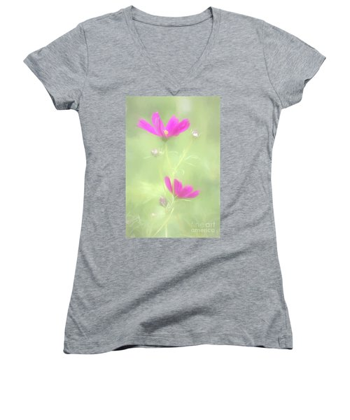 Delicate Painted Cosmos Women's V-Neck