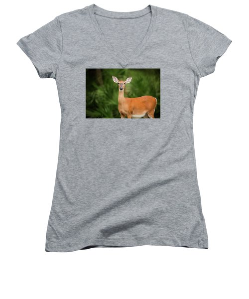 Women's V-Neck featuring the photograph Doe by Kevin Banker