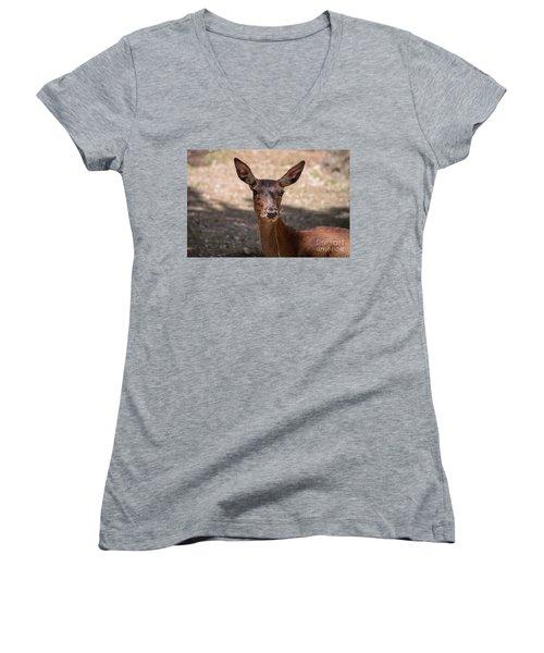 European Roe Deer Women's V-Neck
