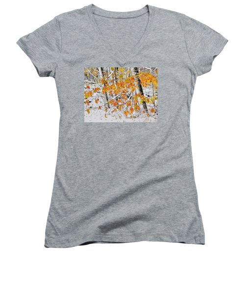 Fall And Snow Women's V-Neck