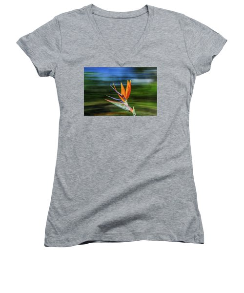 Flying Bird Of Paradise Women's V-Neck