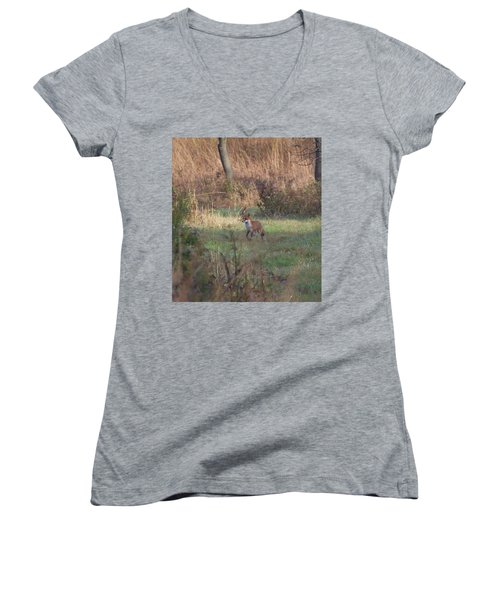 Fox On Prowl Women's V-Neck