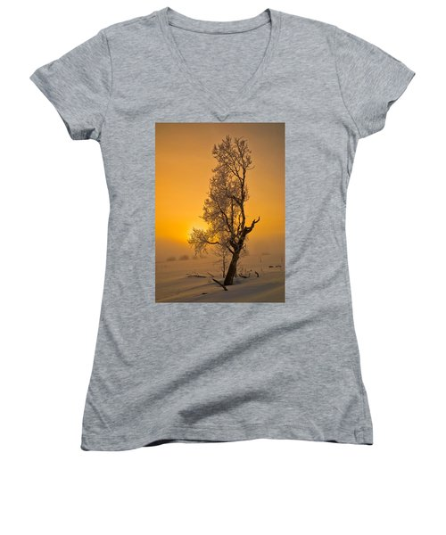 Frosted Tree Women's V-Neck