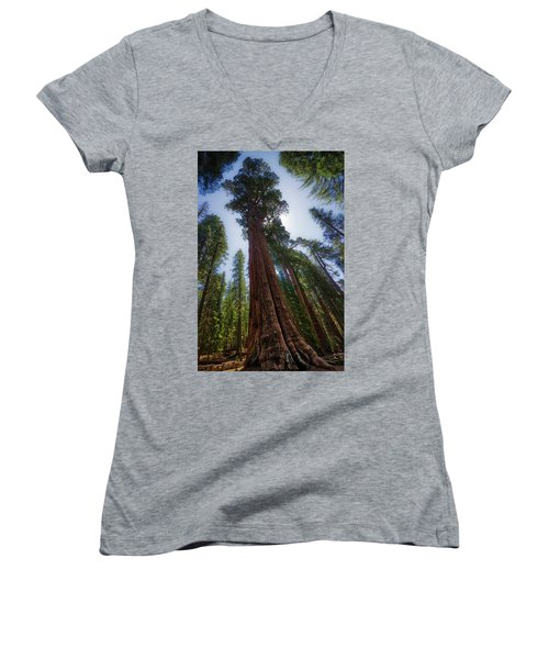 Giant Sequoia Tree Women's V-Neck