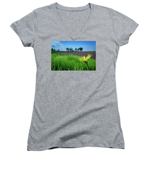 Goat's Beard On Nelson Farm II Women's V-Neck