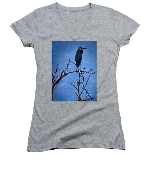 Great Blue Heron 3 Women's V-Neck
