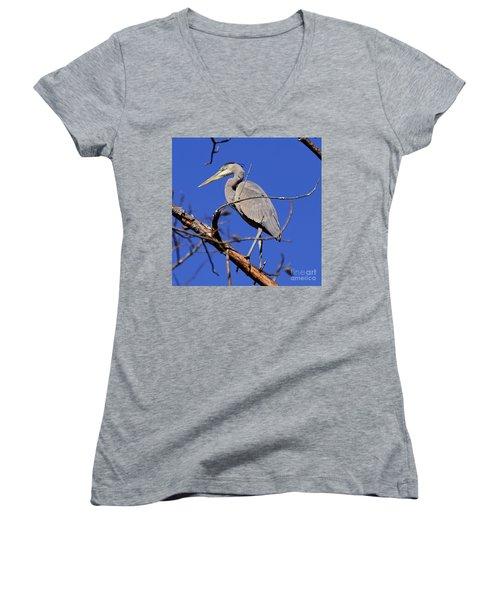 Great Blue Heron Strikes A Pose Women's V-Neck