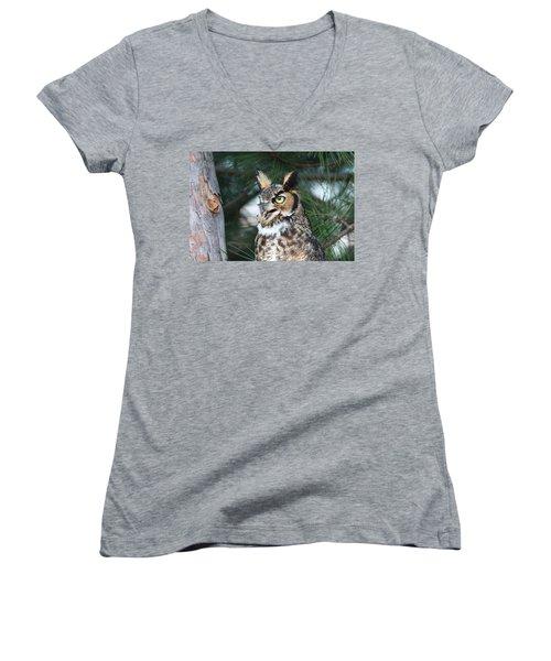 Great Horned Owl 5151801 Women's V-Neck