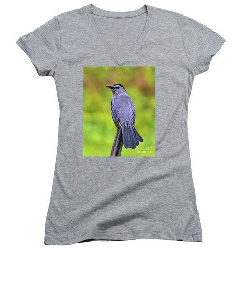 Grey Catbird Women's V-Neck