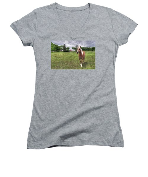 Horse In Pasture Women's V-Neck